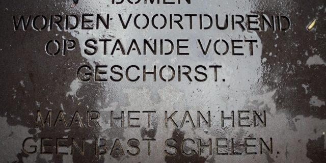 lijst aangevraagde en verleende kapvergunningen in Amsterdam Zuid