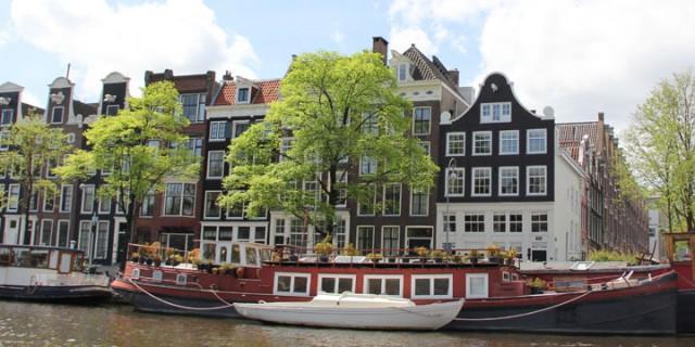 13 oktober 2016 Informatieavond nieuwe Bomenverordening Amsterdam